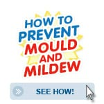 see-how-to-prevent-mould-and-mildew