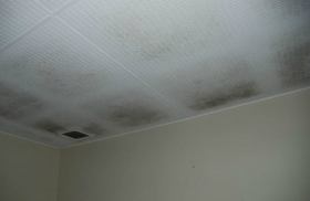 Kill mould with your ventilation system