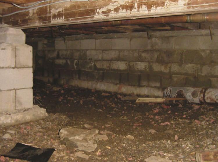 Install subfloor ventilation in damp subfloors
